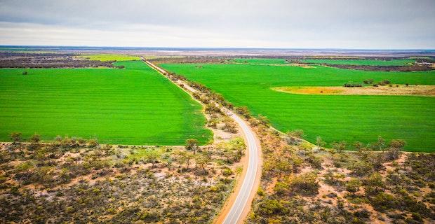 Agworld crops wheat drone shot