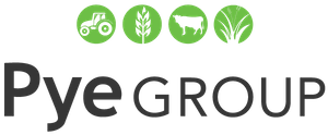 pyeGroup.png logo